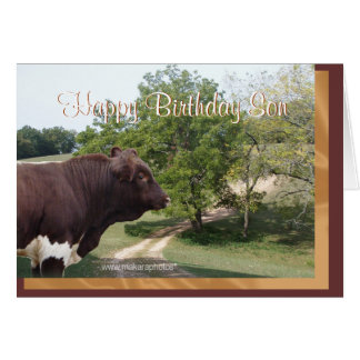 Happy Birthday Son-customize Card