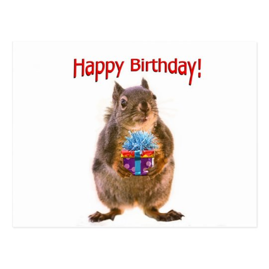 Happy Birthday Squirrel with Present Postcard