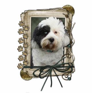 Happy Birthday - Stone Paws - Tibetan Terrier Standing Photo Sculpture