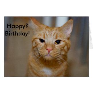 Happy? Birthday! (This Cat looks grumpy) Card