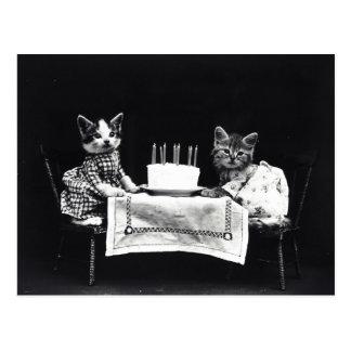 Happy Birthday to Meow   Kitties with Cake Postcard