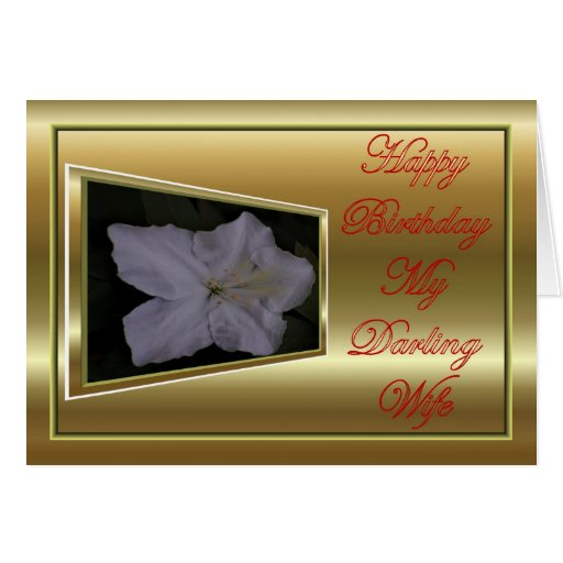Happy Birthday to wife from husband Greeting Cards