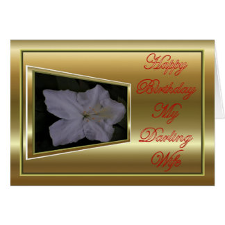 Happy Birthday to wife from husband Greeting Card