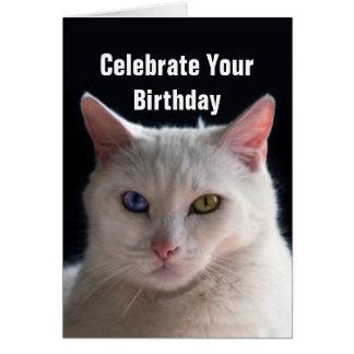 Happy Birthday Turkish Angora Cat Greeting Card