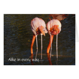 Happy Birthday Twins!-Pink Flamingos Card