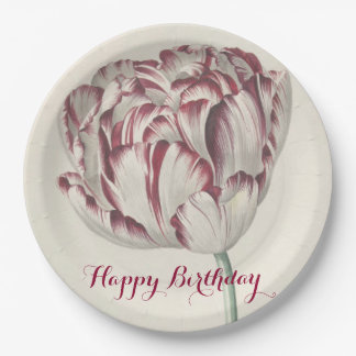 Happy Birthday | White & Red Tulip Paper Plate