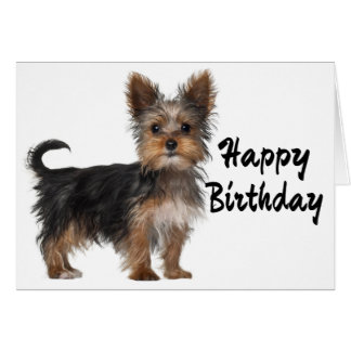 Happy Birthday Yorkshire Terrier Puppy Dog Card
