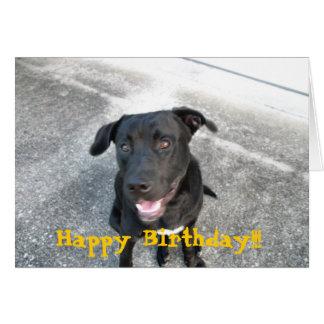 Happy Black Labrador Card
