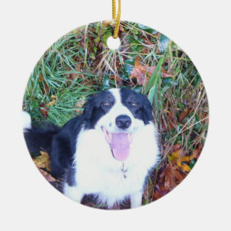 Happy Border Collie Ceramic Ornament