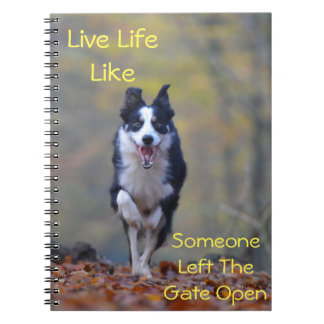 Happy Border Collie dog running and playing Notebook