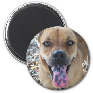 Happy Brown dog with spotted tongue Magnet