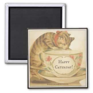 "Happy Caturday 2"" Square Magnet"