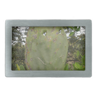 HAPPY CATUS RECTANGULAR BELT BUCKLES
