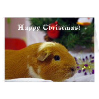 Happy Christmas guinea pig card