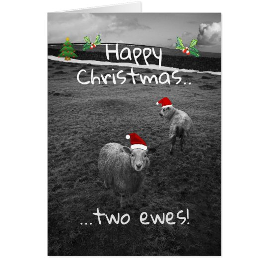 Happy Christmas Two Ewes Card