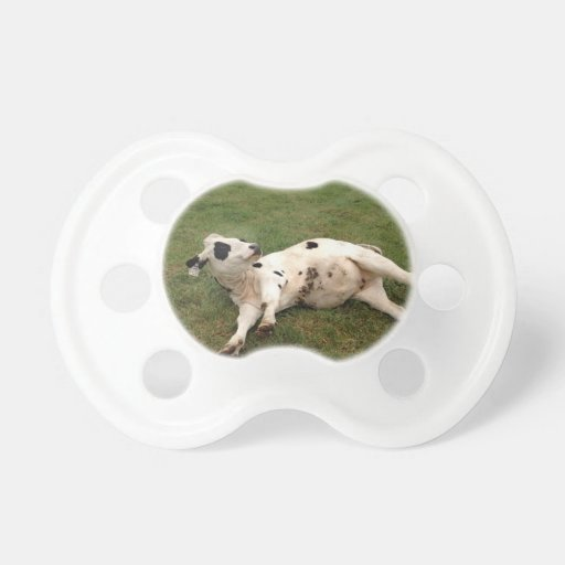happy cow organic farm baby pacifier