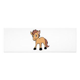 Happy Cute Brown Foal Little Horse Pony Colt Art Photo