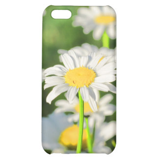 Happy Daisies Case For iPhone 5C