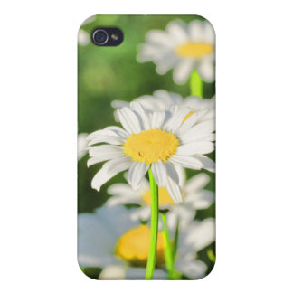 Happy Daisies iPhone 4/4S Covers