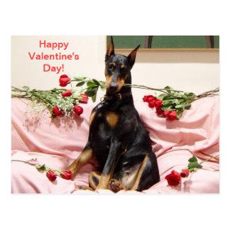 Happy Dober-Valentine to you Postcard