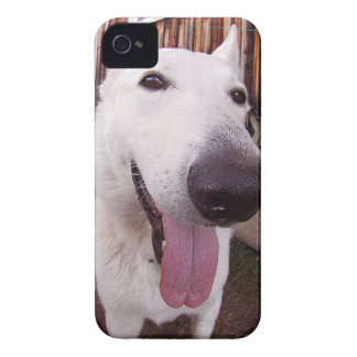 Happy dog! iPhone 4 Case-Mate cases