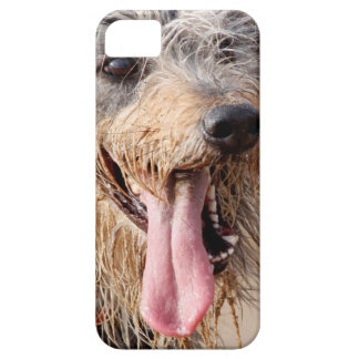 Happy dog on a beach iPhone 5 cases