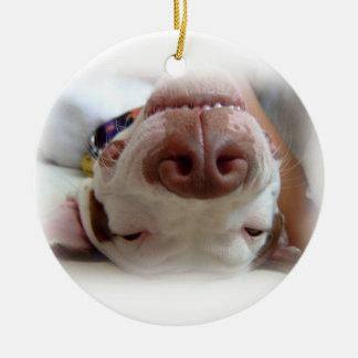 Happy Dog Ornament