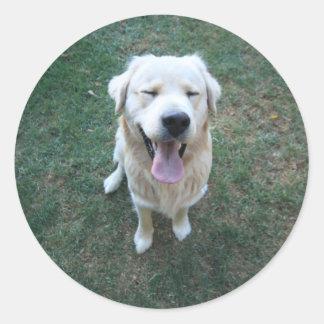 Happy doggy classic round sticker