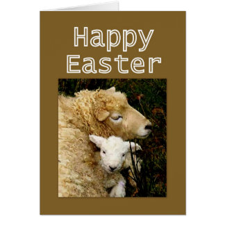 Happy Easter  Blessings - Ewe and Lamb Greeting Card