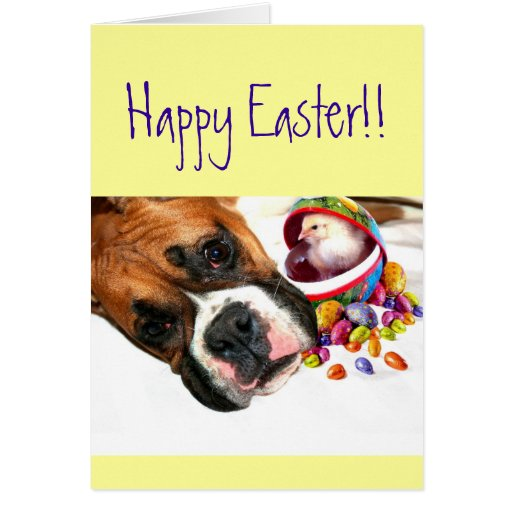 Happy Easter Boxer puppy and Chick greeting card