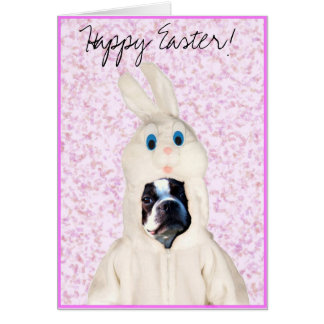 Happy Easter bunny boston terrier greeting card