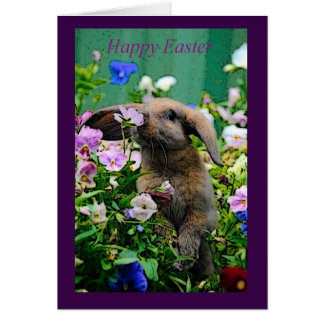Happy Easter Bunny Rabbit Holiday Easter Card