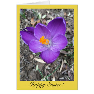 Happy Easter Card with A Purple Crocus