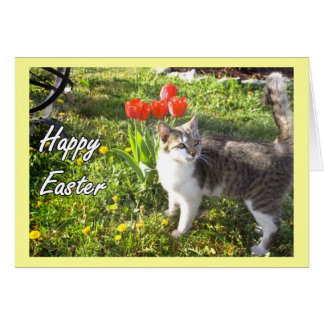 Happy Easter cat greeting card