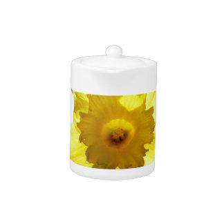 Happy Easter, Daffodil 01.2.T