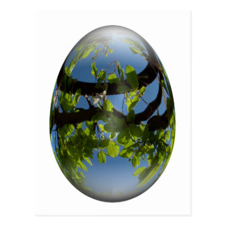 happy easter egg young leaves postcard