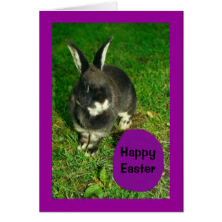 Happy Easter From Somebunny Who Loves You! Card