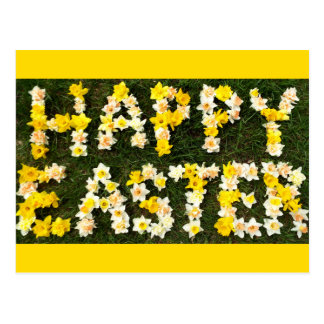 Happy Easter in daffodils spring grass photograph Postcard