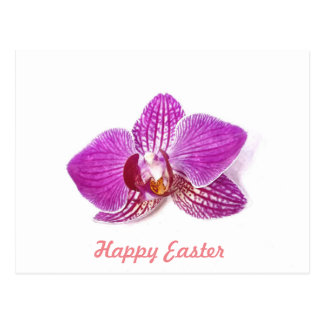 Happy Easter, Lilac phalaenopsis floral fine art Postcard