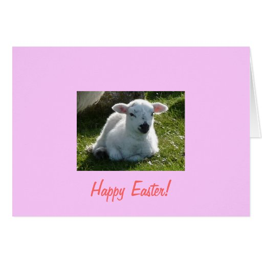 Happy Easter Little Lamb Greeting Card