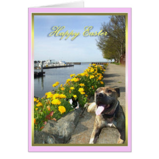 Happy Easter Pitbull and bunny greeting card