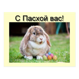Happy Easter Rabbit greeting card Postcard