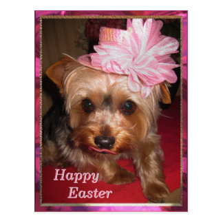 Happy Easter Yorkie Postcard