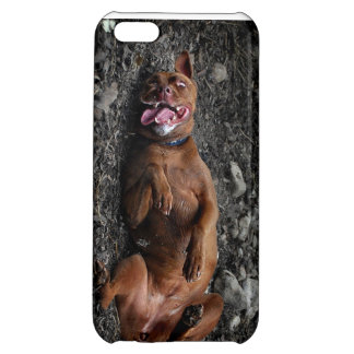 Happy Goofy Chocolate Lab Pit Mix Dog 2 iPhone 5C Cover