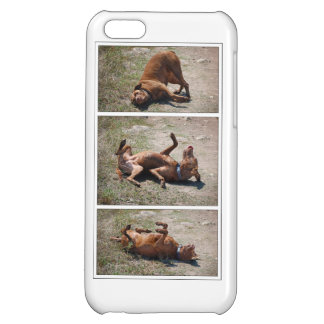Happy Goofy Chocolate Lab Pit Mix Dog triptych iPhone 5C Covers