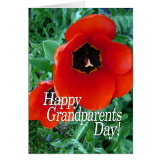 Happy Grandparents Day Grandma - Poppy Flowers Card