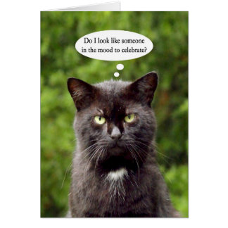 Happy Grouch Day black annoyed cat greeting card