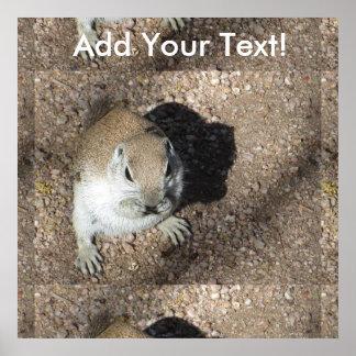 Happy Ground Squirrel Poster