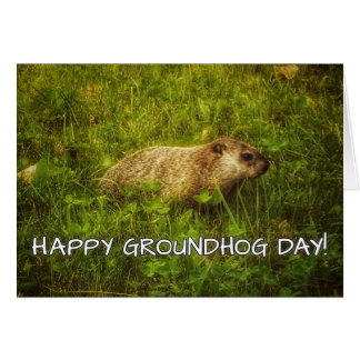 Happy Groundhog Day! greeting card