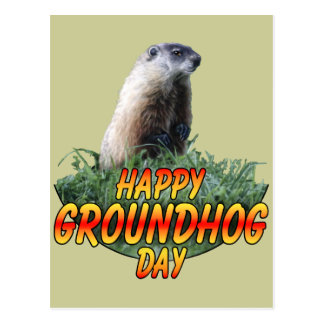 Happy Groundhog Day Postcard